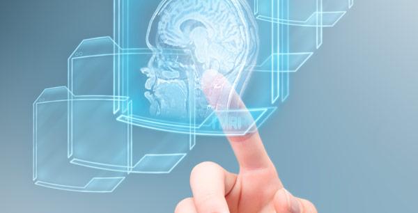 Curso Neurociencias en la Educación