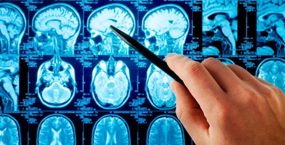 Diplomado Bases Anatómicas de la Imagenología Normal
