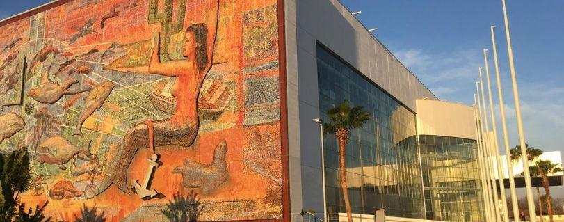 Tres charlas magistrales realizó académico Finis Terrae en 56º Congreso de Medicina Reproductiva en México