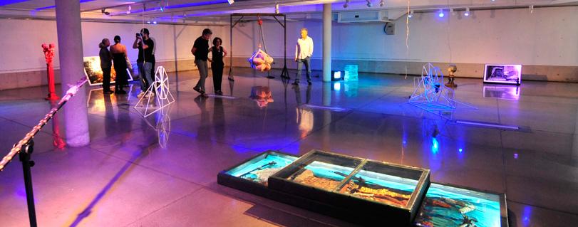 """Egresados de Artes Visuales inauguraron muestra """"¿Quién quiere ir a la Tierra?"""" en Galería Patricia Ready"""