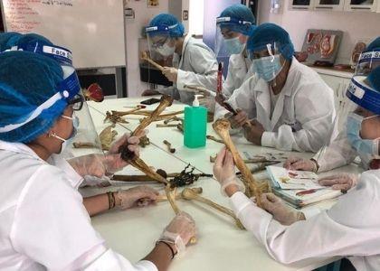 Carrera de Kinesiología U. Finis Terrae se consolida entre las diez mejores de Chile