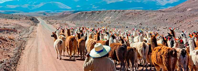 Curso Patrimonio Cultural, Aspectos Indígenas y Sociológicos en el Desarrollo de Proyectos