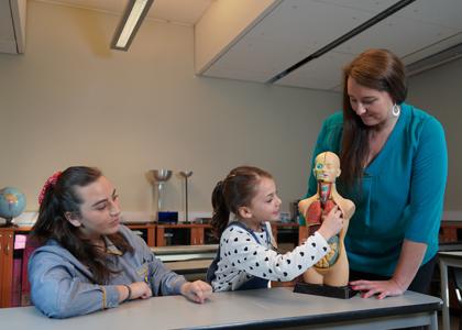 Conoce los nuevos requisitos de ingreso para estudiar pedagogía y el escenario que enfrentarán los futuros profesores
