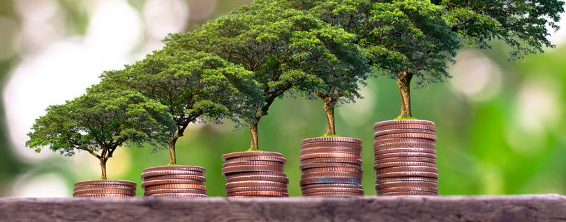 Seminario abordará beneficios y desafíos de la Economía Solidaria para mitigar el cambio climático