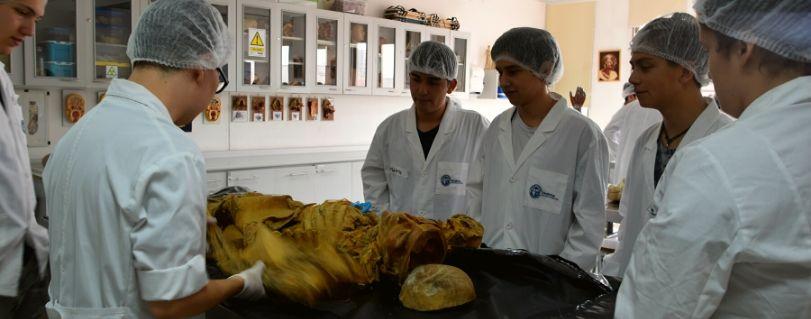 Con éxito se realizó la 9° versión del Curso de Verano de la Escuela de  Medicina U. Finis Terrae